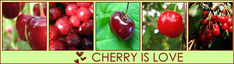 cherry is love